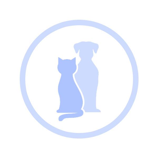 luchtreinigers-voor-huisdieren